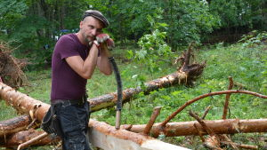Hannes Hyvönen, timmerman och miljökonstnär