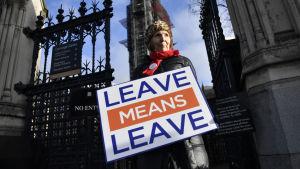 Brexitanhängare utanför parlamentet i London.