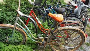 cyklar i buskar på innergård