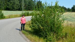 En kvinna står på en vägkant mellan vägen och en stor buske.