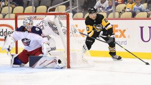 Pittsburghanfallaren Kasper Björkqvist försöker överlista Columbusmålvakten Elvis Merzlikins.