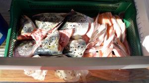 Huvuden av finsk vild lax ligger i en korg i en fiskdisk.