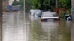 Översvämning i staden Obrenovac i Serbien