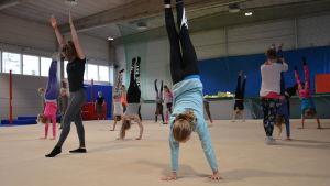 Pargas IF:s gymnaster övar på att stå på händerna.