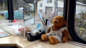 Björn maskot inne i bussen.