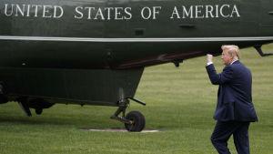 Donald Trump med handen knuten i luften som hälsning, på väg till helikoptern, påmålad United States of America
