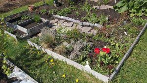 Odlingslott med grönsaker och blommor.