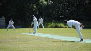 Ekenäs Cricket Club spelar på Fkyets sportplan i Ekenäs