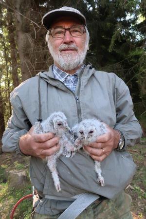 Seppo Karhu håller två uggleungar i famnen