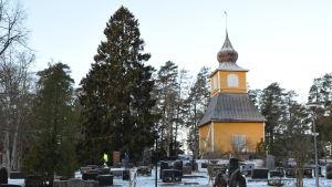 Dragsfjärds gula klocktorn som står bredvig den cirka 20 meter höga granen.