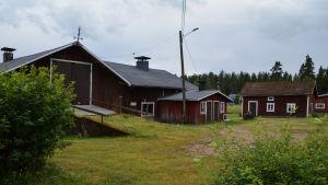 Den röda ladugården på Rosasgården och gröna buskar i förgrunden.
