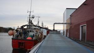 Mikael Brunströms trålare vid fiskfabriken i Kasnäs.