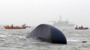 Det kapsejsade fartyget Sewol den 18 april 2014