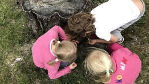Tre barn uppifrån. Sitter på huk och letar efter nåt i gräset.
