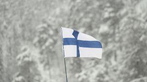 Finlands flagga, Rukas skidvärldscup.