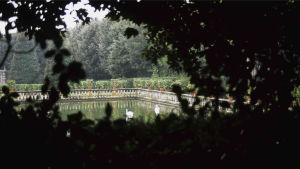 En bassäng i en trädgård. Lena Séraphins fotografi heter Nektar.