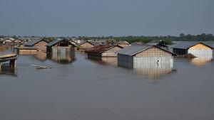 Stora delar av den nordindiska delstaten Assam ligger under vatten