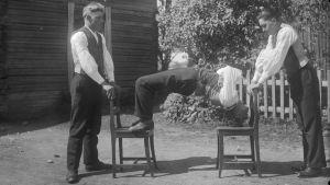 En man böjer sig uppåt mellan två stolar med hjälp av bara benen och huvudet, inte händerna. Bilden är tagen 1931 i Närpes.