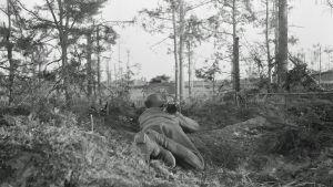 Suomalainen sotilas tähtää panssarikauhulla. Ihantala 13. heinäkuuta 1944.