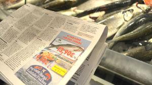 Erbjudande annons av Borgå fiskhus framför disken