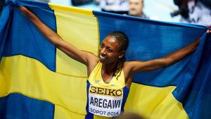 Abeba Aregawi, inomhus-VM 2014