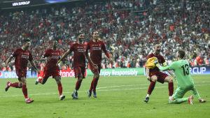 Liverpoolspelarna jublar efter Adrians räddade straff.
