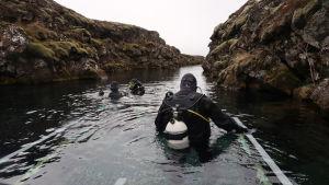 Karisbon Kadri Bäckman dyker mellan kontinentalplattorna på Island, i Silfrasprickan.