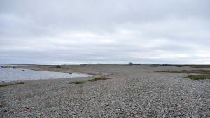 Strandlinje på Jurmo i Korpo skärgård.
