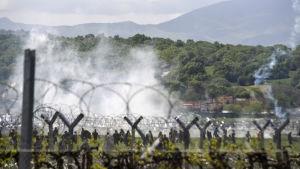 Makedonsk polis använder tårgas mot flyktingar vid gränsen mot Grekland.