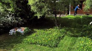 Man klipper gräs med gräsklippare.