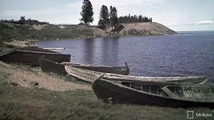 Veneitä järven rannalla.