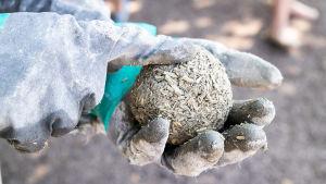 Hamppukomposiitista pyöräytetty testipallo, jota ollaan painamassa sormella