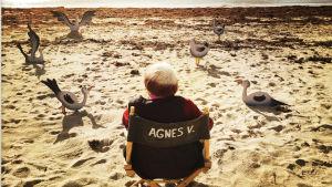 Agnes Varda istuu hiekkarannalla ohjaajantuolissa selin kameraan. Kuva dokumenttielokuvasta Varda, Agnèsin silmin.