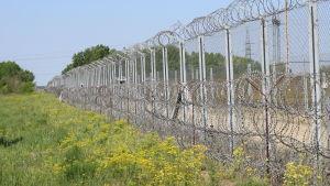Ungerns gränsstängsel mot Serbien