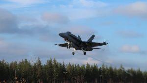 Ett av Flygvapnets Hornet-plan lyfter från en landsvägsbas i Rovaniemi under operationsövningen Ruska 20, oktober 2020.
