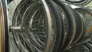 Cykelhjul hänger på rad i verkstaden