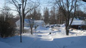 en gata i Ingå