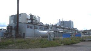 Fermion i Hangö med sina ungefär 160 anställda har fylld orderstock åtminstone fram till årsskiftet.