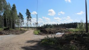 Sommaren 2012 har träden fått ge vika på Majberget. Om något år finns här ett färdigt bostadsområde.