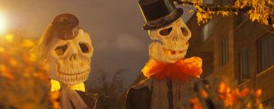 Halloween suku puoli videot