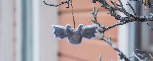 Reflex hänger på gren