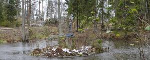 en damm i Bensows park i grankulla, två skulpturer av trollsländor gjorda i trä och metall på en ö i dammen.