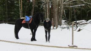 Jaakko Nuotio kouluttaa Aletheiaa Rohan talleilla Kemiönsaaressa.