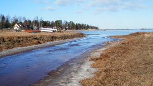 Vattnet från farmområdet i Jakobstad rinner ut i havet i Fäboviken.