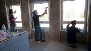 Kolme kovaa testaa eri tavat pestä ikkunoita.