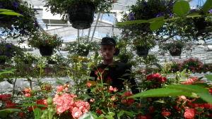 Johan Sund, vd för Sunds trädgård