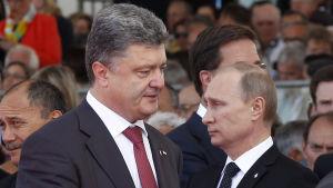 Petro Porosjenko och Vladimir Putin går förbi varandra under firandet av D-dagen i Frankrike.