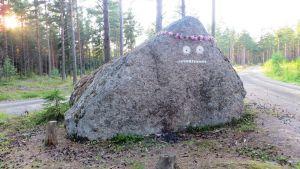 Mårrans ansikte målat på en sten på Pellinge i Borgå skärgård, blomsterkrans på huvudet Tove Jansson100-årsjubileet till ära