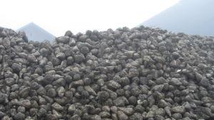 Berg av sockerbetor