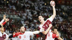 Zarko Markovic, Qatar-Polen, VM-semifinal 2015